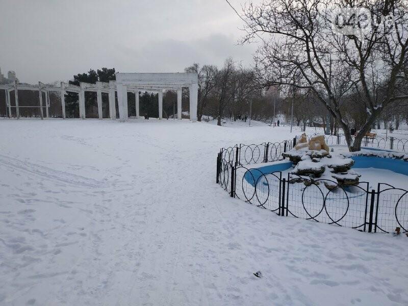 Зима в одесском Парке Победы: снежный фоторепортаж, - ФОТО, фото-1