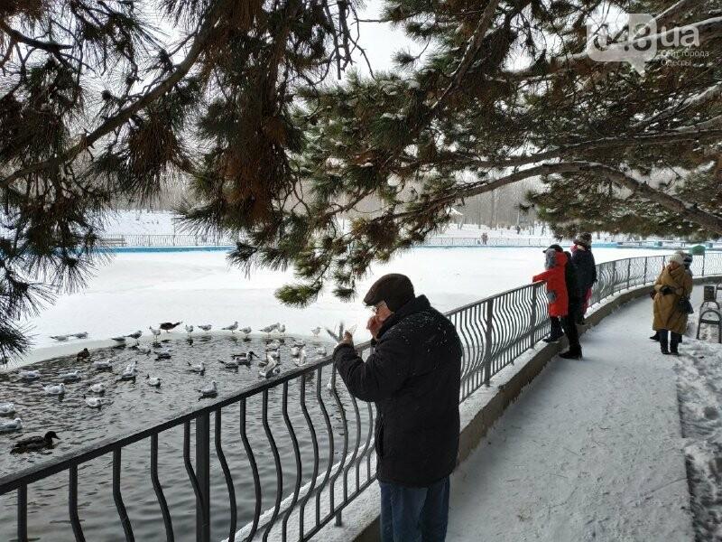 Зима в одесском Парке Победы: снежный фоторепортаж, - ФОТО, фото-30