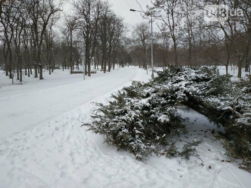 Зима в одесском Парке Победы: снежный фоторепортаж, - ФОТО, фото-27