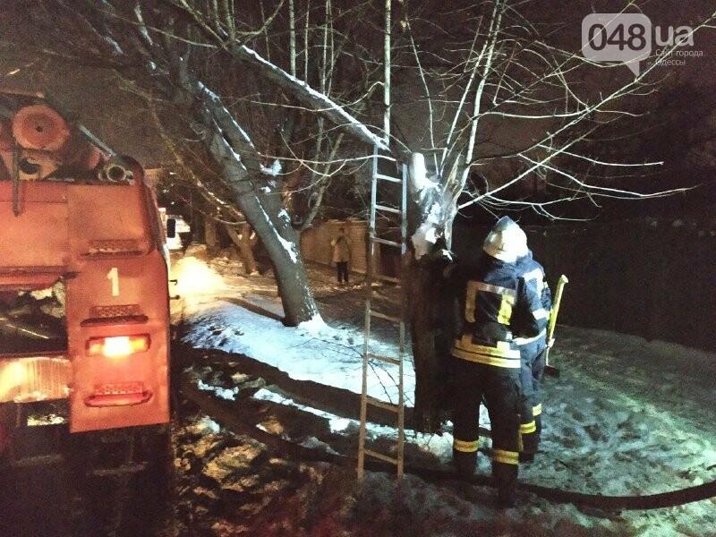 В Одессе что бы потушить одно дерево пожарники израсходовали более 2 тонн воды, - ФОТО, фото-10