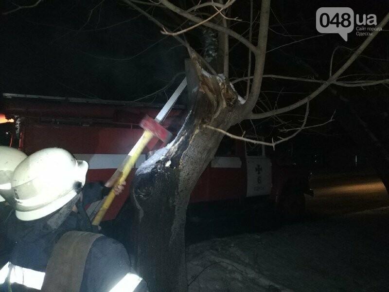 В Одессе что бы потушить одно дерево пожарники израсходовали более 2 тонн воды, - ФОТО, фото-6