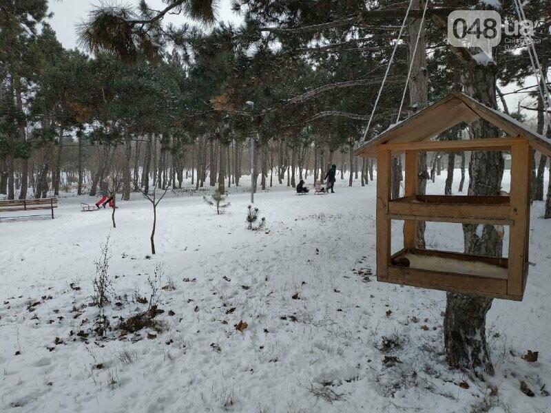 Зима в одесском Парке Победы: снежный фоторепортаж, - ФОТО, фото-16