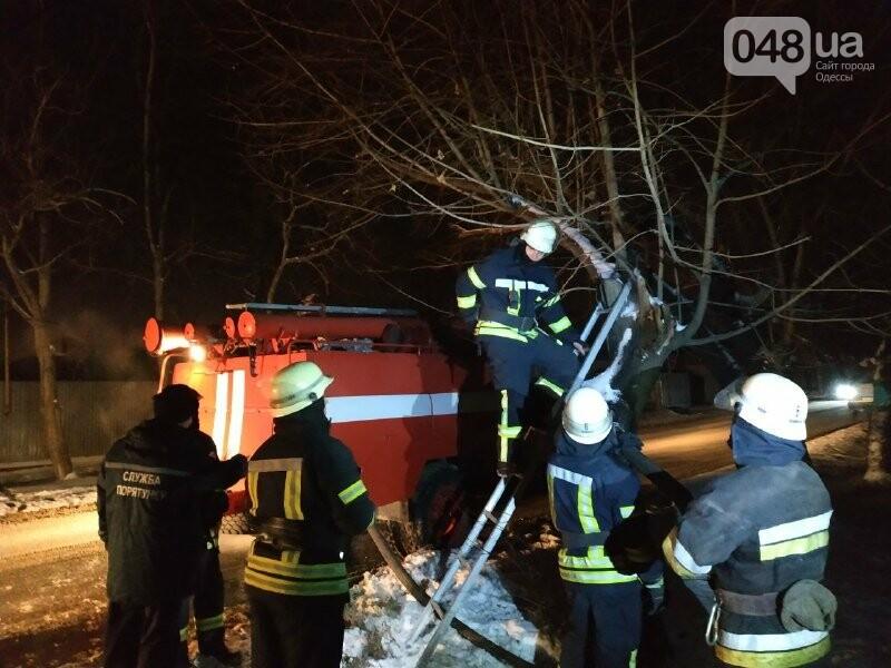 В Одессе что бы потушить одно дерево пожарники израсходовали более 2 тонн воды, - ФОТО, фото-9