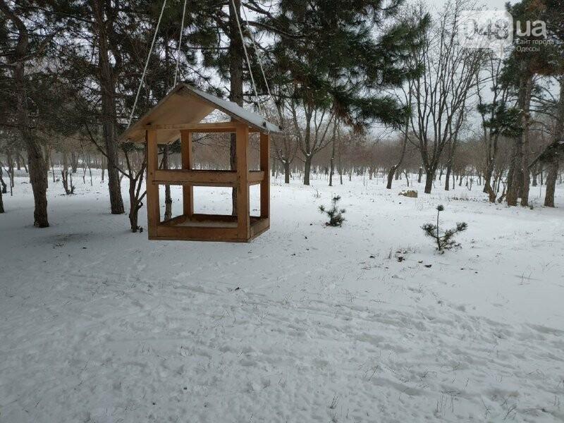 Зима в одесском Парке Победы: снежный фоторепортаж, - ФОТО, фото-20