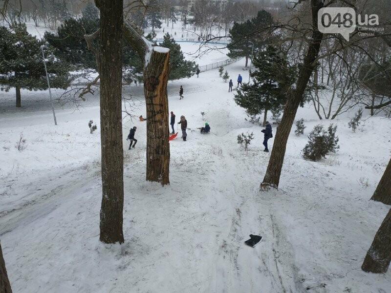 Зима в одесском Парке Победы: снежный фоторепортаж, - ФОТО, фото-15