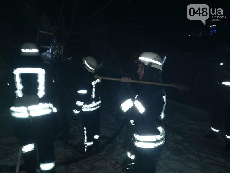 В Одессе что бы потушить одно дерево пожарники израсходовали более 2 тонн воды, - ФОТО, фото-2