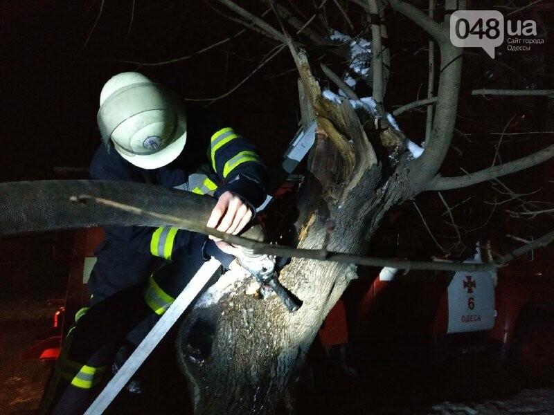 В Одессе что бы потушить одно дерево пожарники израсходовали более 2 тонн воды, - ФОТО, фото-5