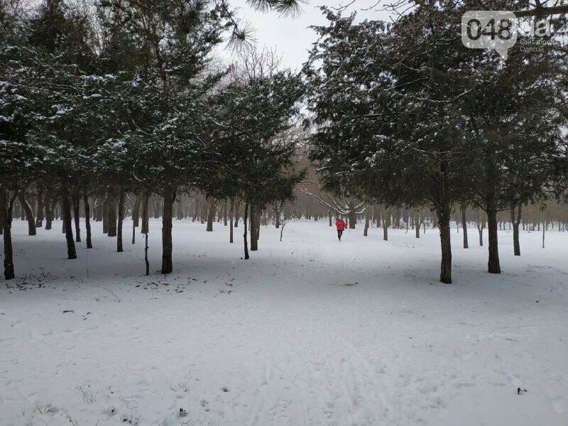 Зима в одесском Парке Победы: снежный фоторепортаж, - ФОТО, фото-33