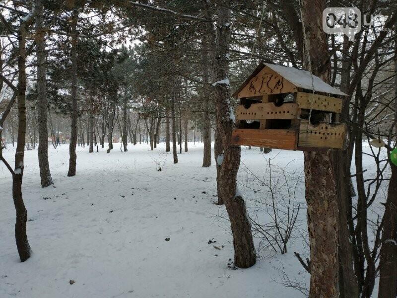 Зима в одесском Парке Победы: снежный фоторепортаж, - ФОТО, фото-34