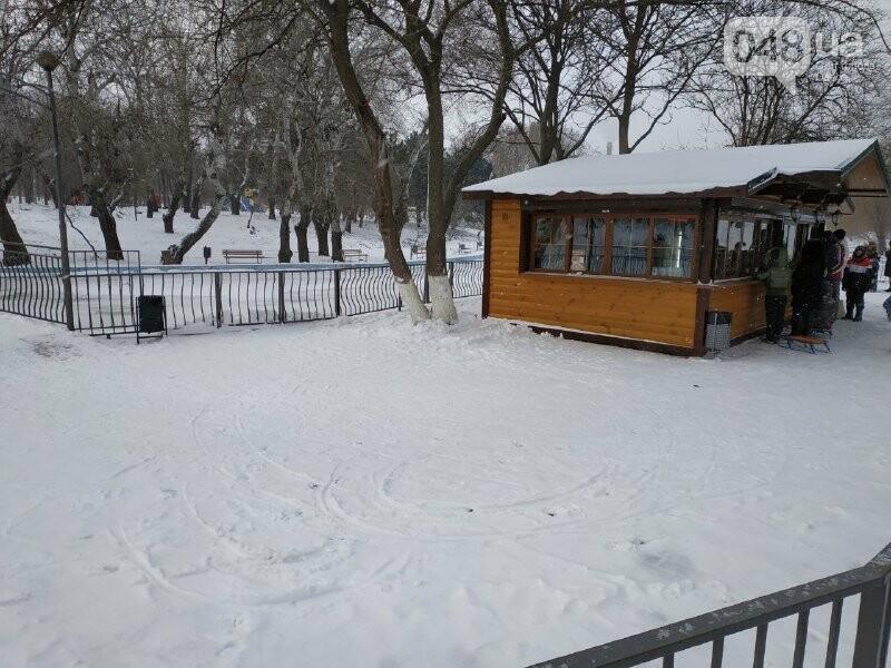 Зима в одесском Парке Победы: снежный фоторепортаж, - ФОТО, фото-13