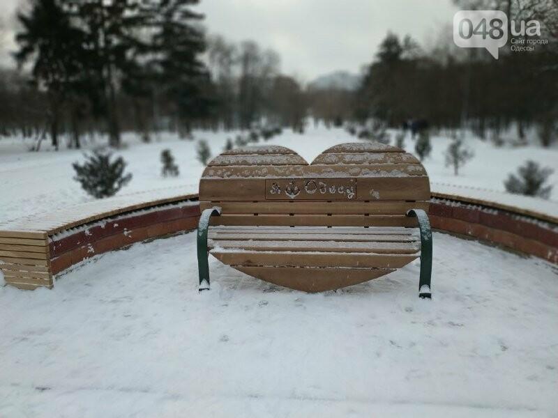 Зима в одесском Парке Победы: снежный фоторепортаж, - ФОТО, фото-14