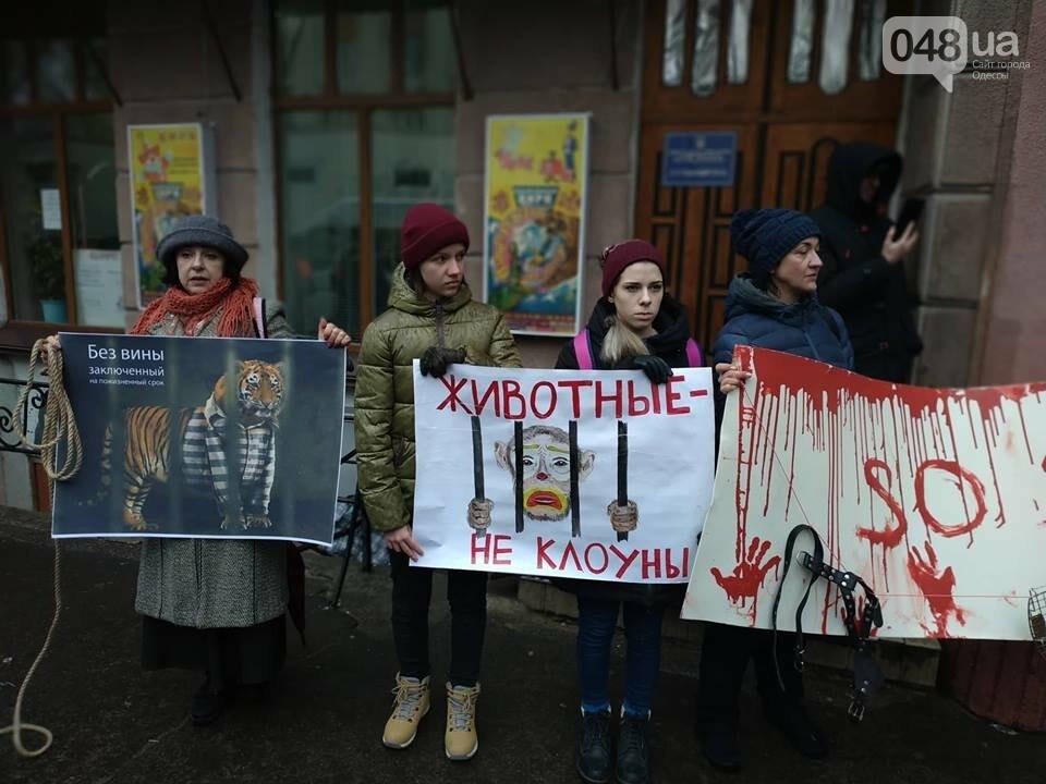 Акция за цирк в Одессе без животных: как начиналась и чем закончилась, - ФОТО, ВИДЕО, фото-37