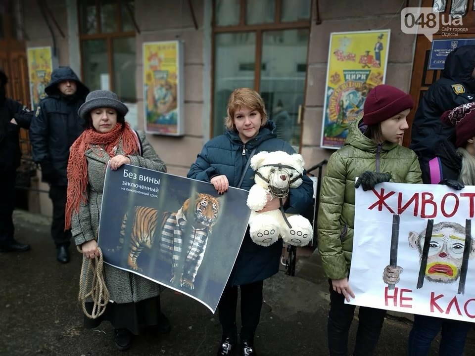Акция за цирк в Одессе без животных: как начиналась и чем закончилась, - ФОТО, ВИДЕО, фото-38