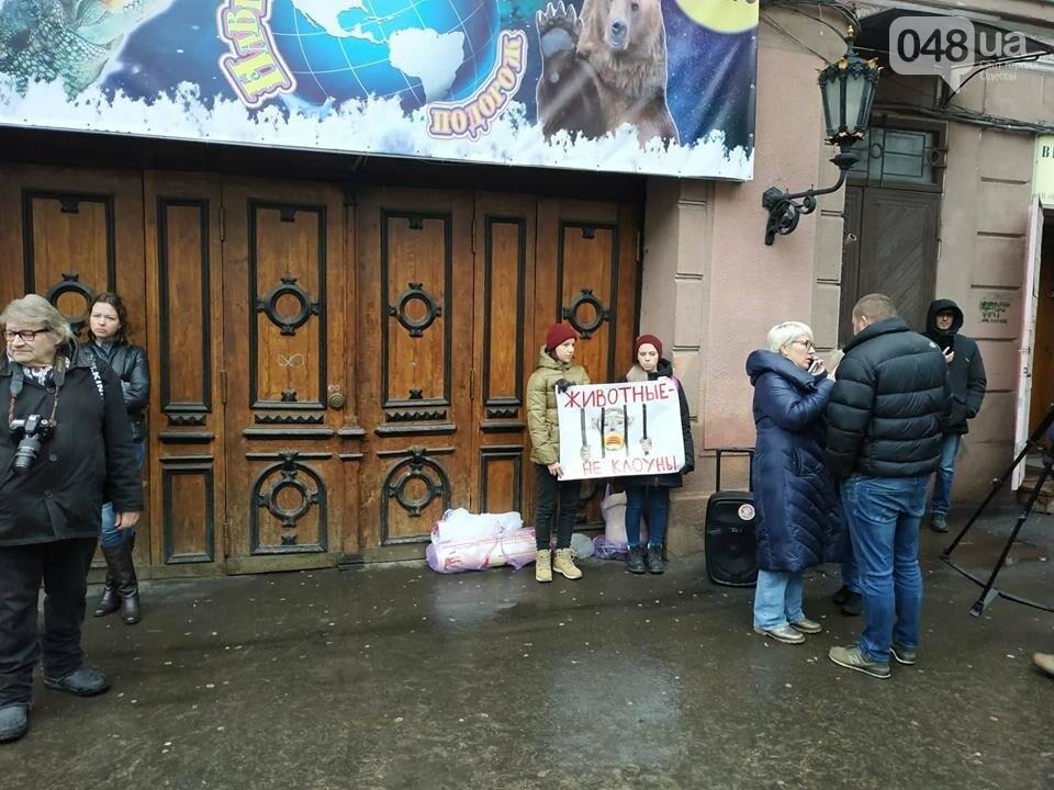 Акция за цирк в Одессе без животных: как начиналась и чем закончилась, - ФОТО, ВИДЕО, фото-1