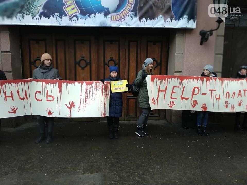 Акция за цирк в Одессе без животных: как начиналась и чем закончилась, - ФОТО, ВИДЕО, фото-3
