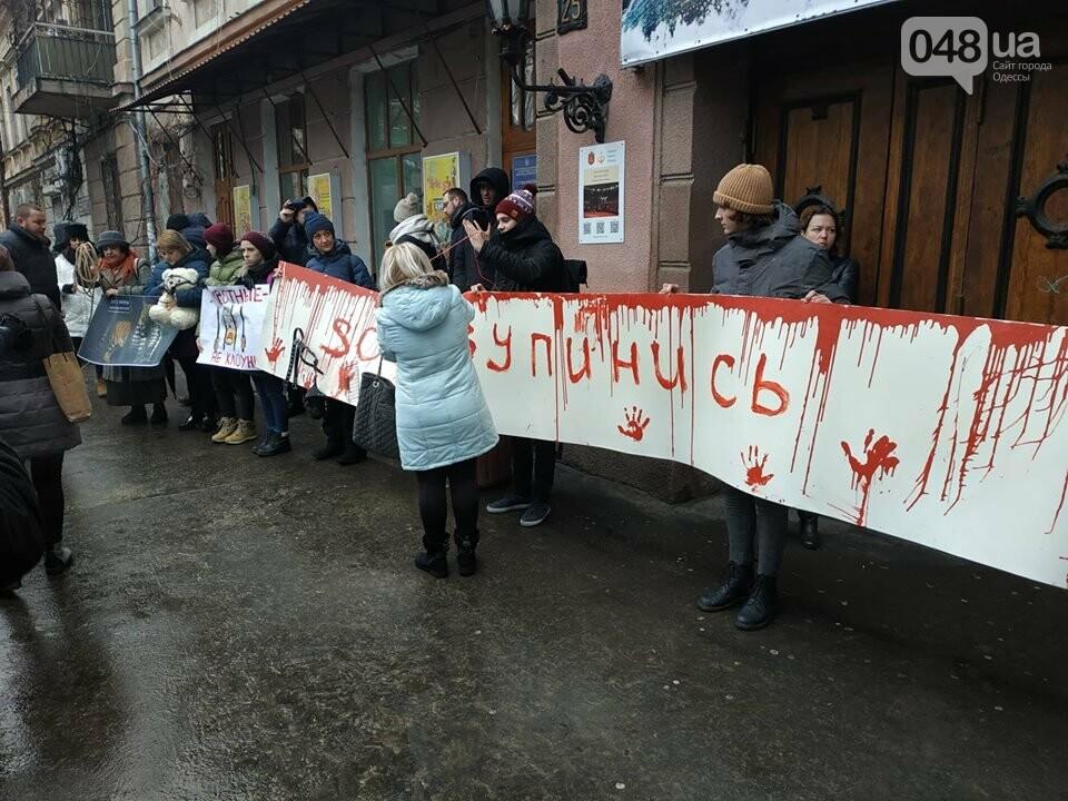 Акция за цирк в Одессе без животных: как начиналась и чем закончилась, - ФОТО, ВИДЕО, фото-13