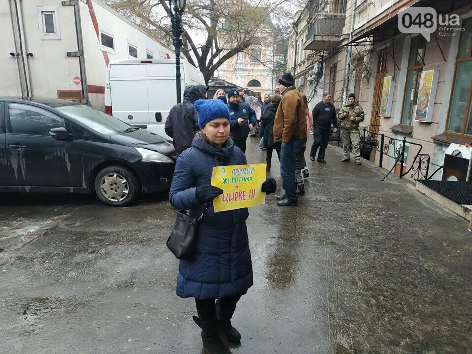 Акция за цирк в Одессе без животных: как начиналась и чем закончилась, - ФОТО, ВИДЕО, фото-10