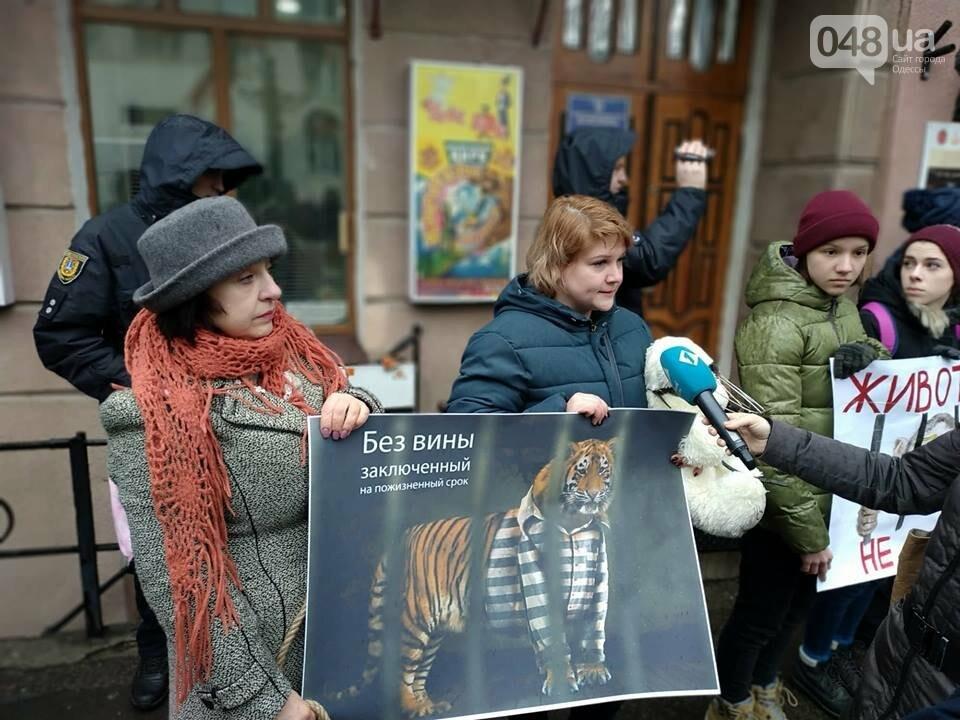 Акция за цирк в Одессе без животных: как начиналась и чем закончилась, - ФОТО, ВИДЕО, фото-27