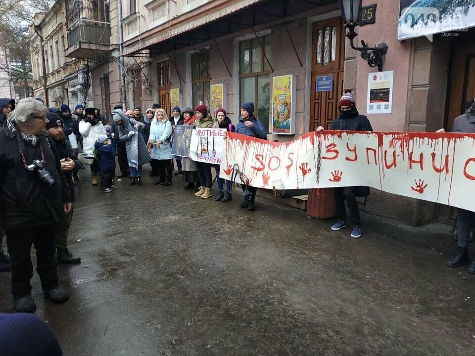 Акция за цирк в Одессе без животных: как начиналась и чем закончилась, - ФОТО, ВИДЕО, фото-18