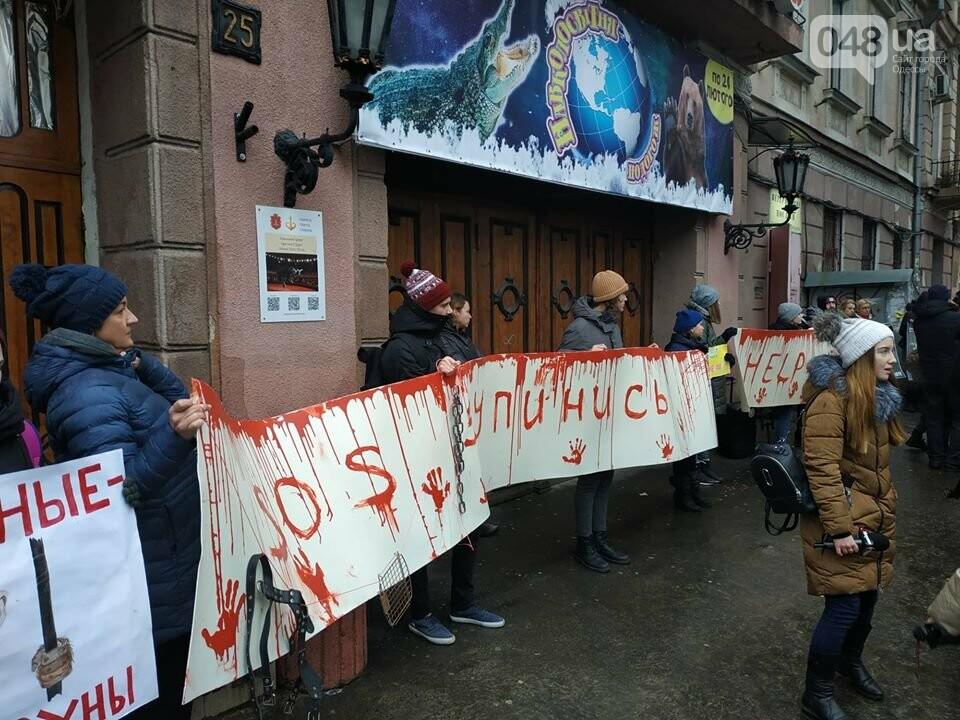 Акция за цирк в Одессе без животных: как начиналась и чем закончилась, - ФОТО, ВИДЕО, фото-20