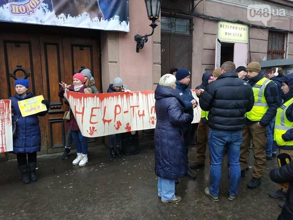 Акция за цирк в Одессе без животных: как начиналась и чем закончилась, - ФОТО, ВИДЕО, фото-7