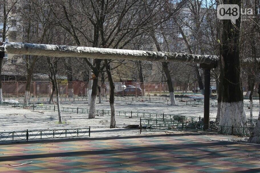 В Одессе бухгалтер начала осваивать бюджетные миллионы, едва успев зарегистрировать фирму , фото-5
