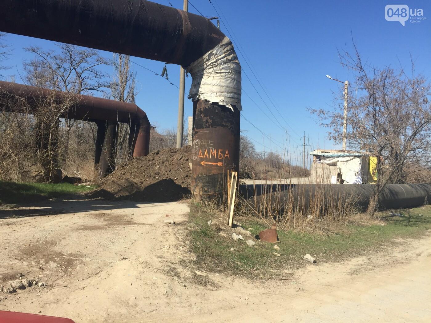 """Строительство """"из фекалий"""", незаконная свалка, угроза прорыва дамбы в Одессе,- ФОТО, ВИДЕО, фото-69"""