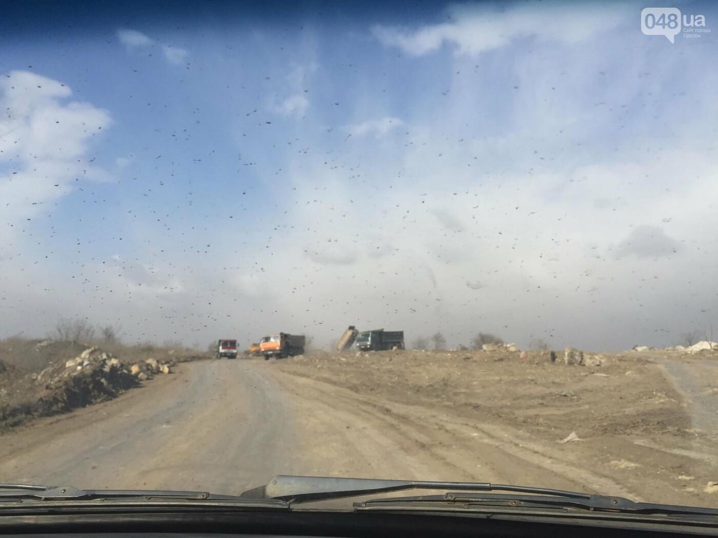 """Строительство """"из фекалий"""", незаконная свалка, угроза прорыва дамбы в Одессе,- ФОТО, ВИДЕО, фото-77"""