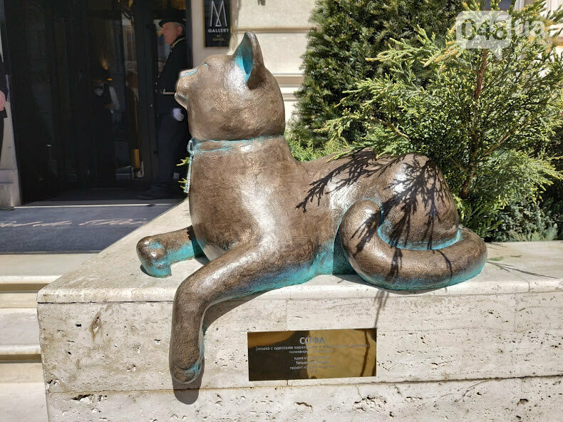 Кошка Софа на Екатерининской  площади