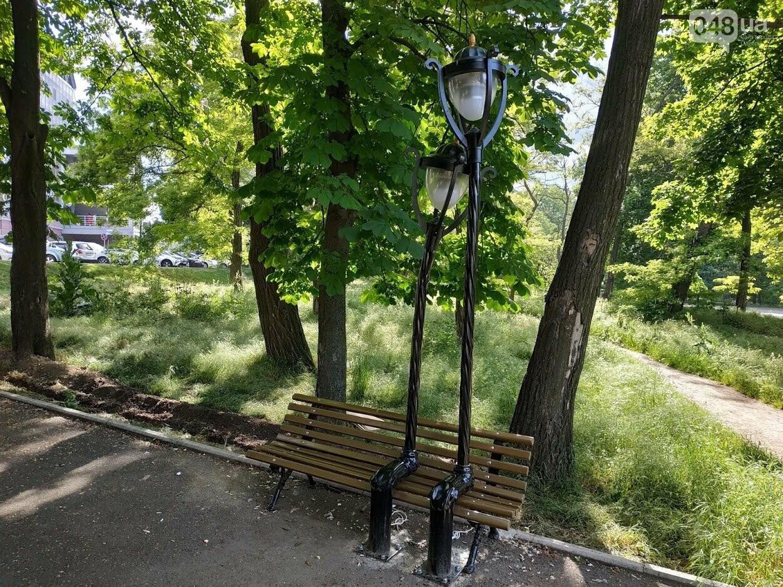 Влюбленные фонари в парке Шевченко