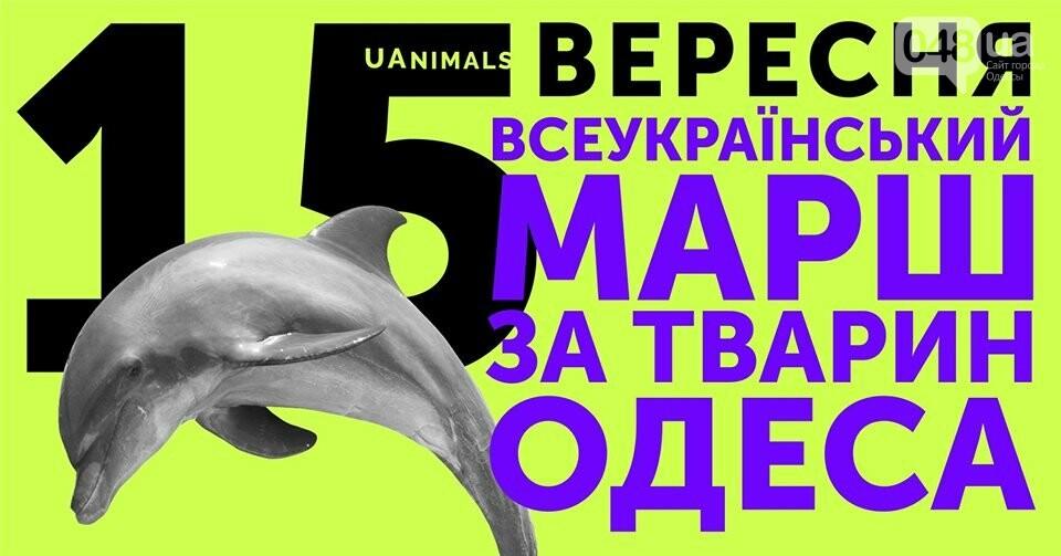 Самые ожидаемые события сентября в Одессе: афиша, - ФОТО, фото-4