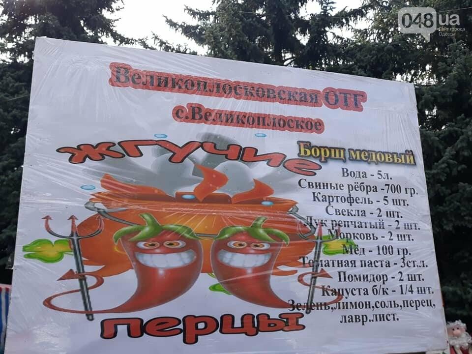 На гастрономическом фестивале в Одесской области прошел чемпионат борща, - ФОТО, фото-13