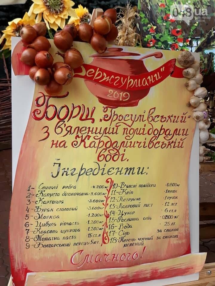 На гастрономическом фестивале в Одесской области прошел чемпионат борща, - ФОТО, фото-10