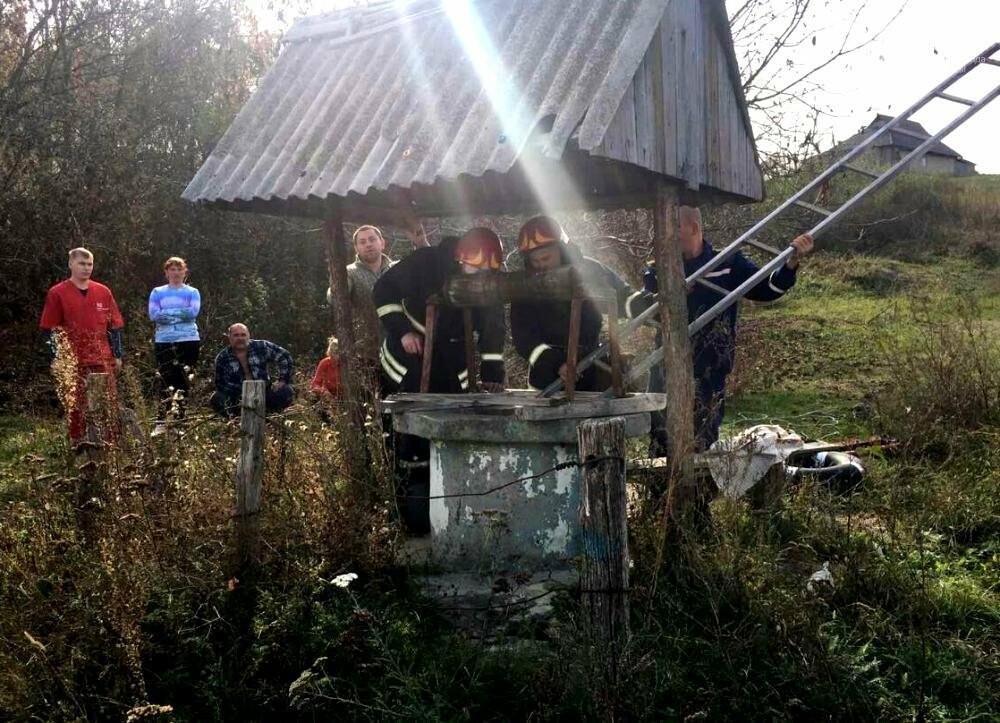 Женщина упала в придорожный колодец в Одесской области, - ФОТО, фото-2