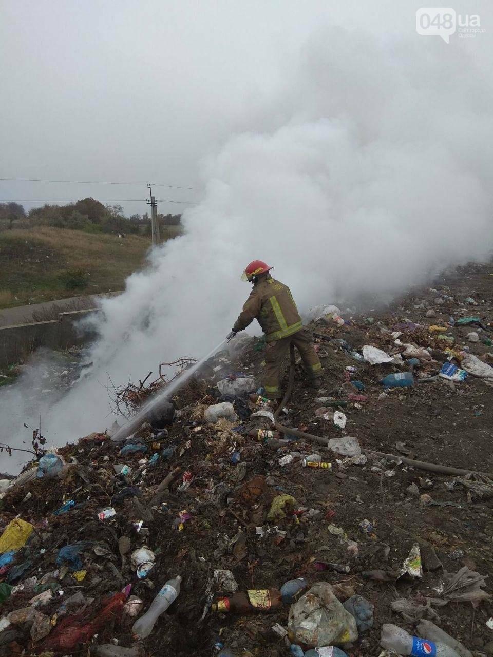 Под Одессой горела мусорная свалка, - ФОТО, фото-3