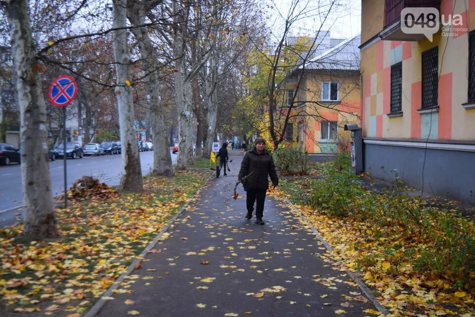 Фото: Ирина Василенко