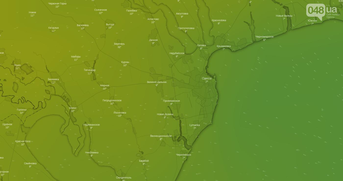 Погода в Одессе сегодня, 20 февраля.