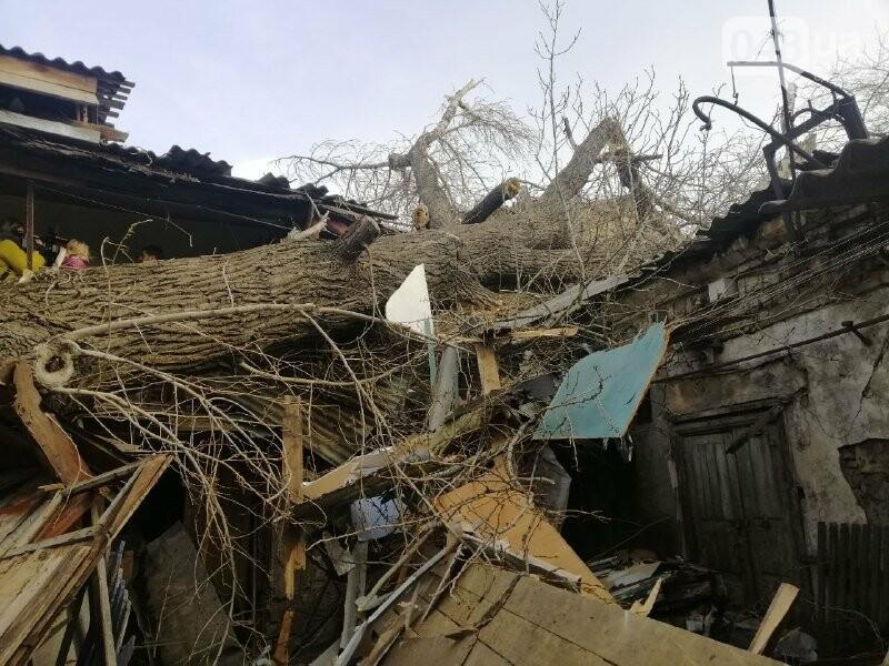 На Молдаванке дерево разрушило дом и заблокировало женщину, - ФОТО, ВИДЕО, ОБНОВЛЕНО , фото-7