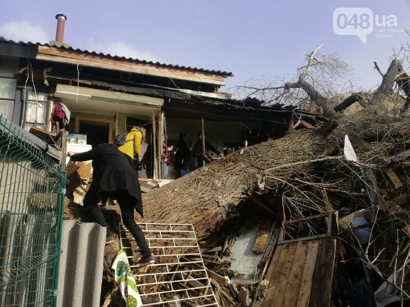 На Молдаванке дерево разрушило дом и заблокировало женщину, - ФОТО, ВИДЕО, ОБНОВЛЕНО , фото-2