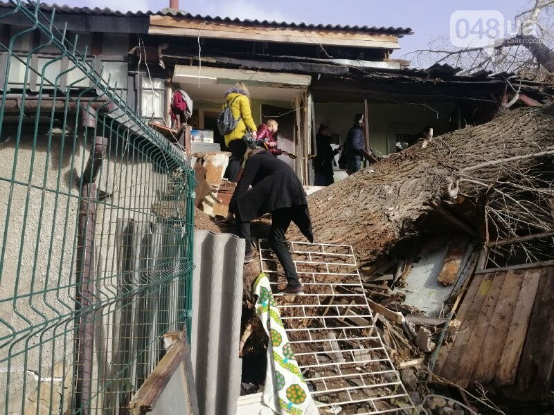 На Молдаванке дерево разрушило дом и заблокировало женщину, - ФОТО, ВИДЕО, ОБНОВЛЕНО , фото-6