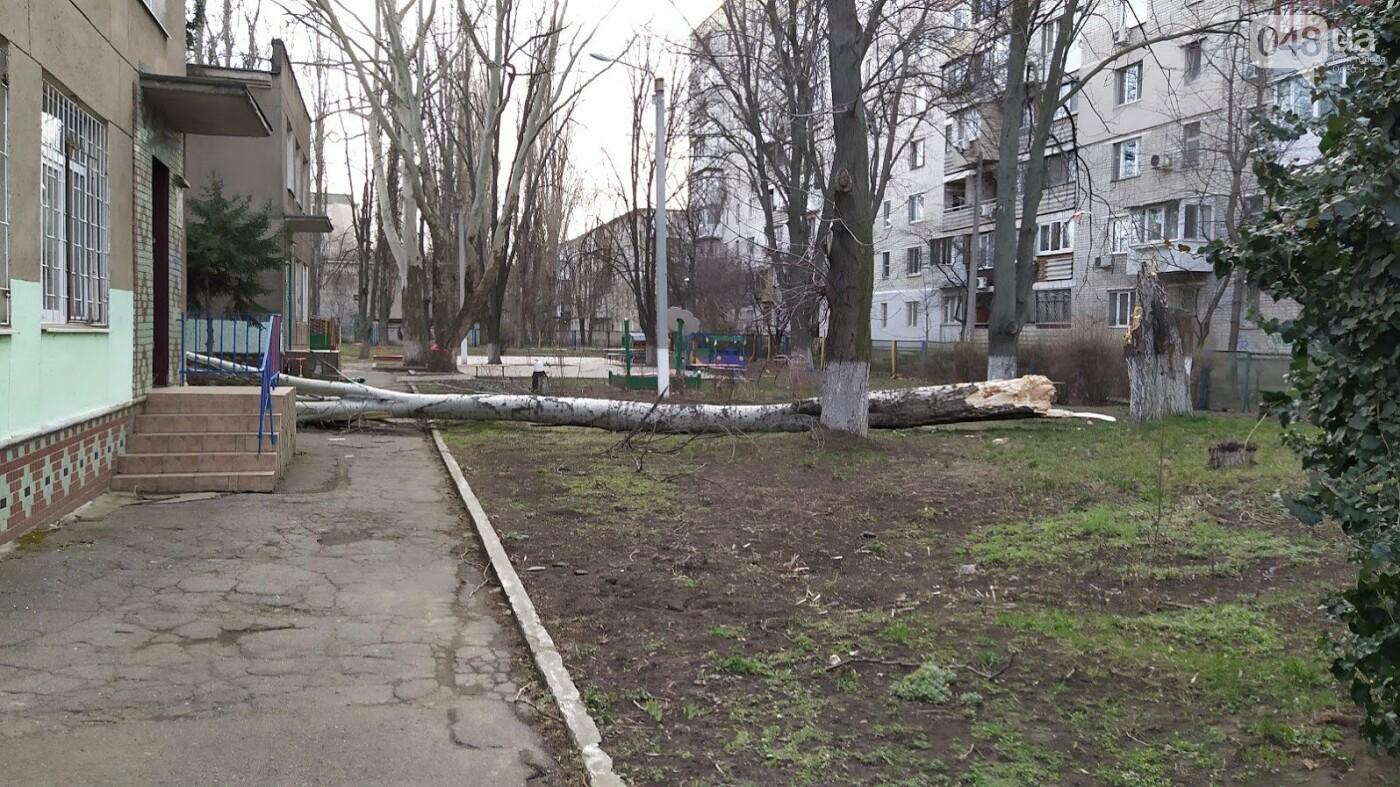 Последствия урагана Юля в одесском садике.