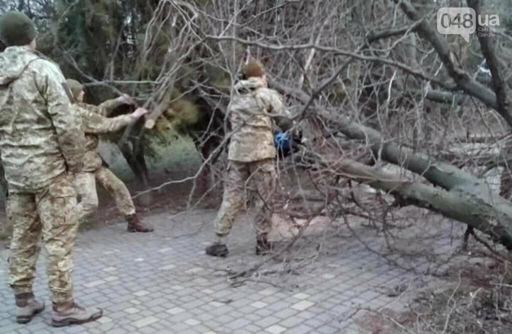 Военные моряки убирали упавшие деревья в Одессе