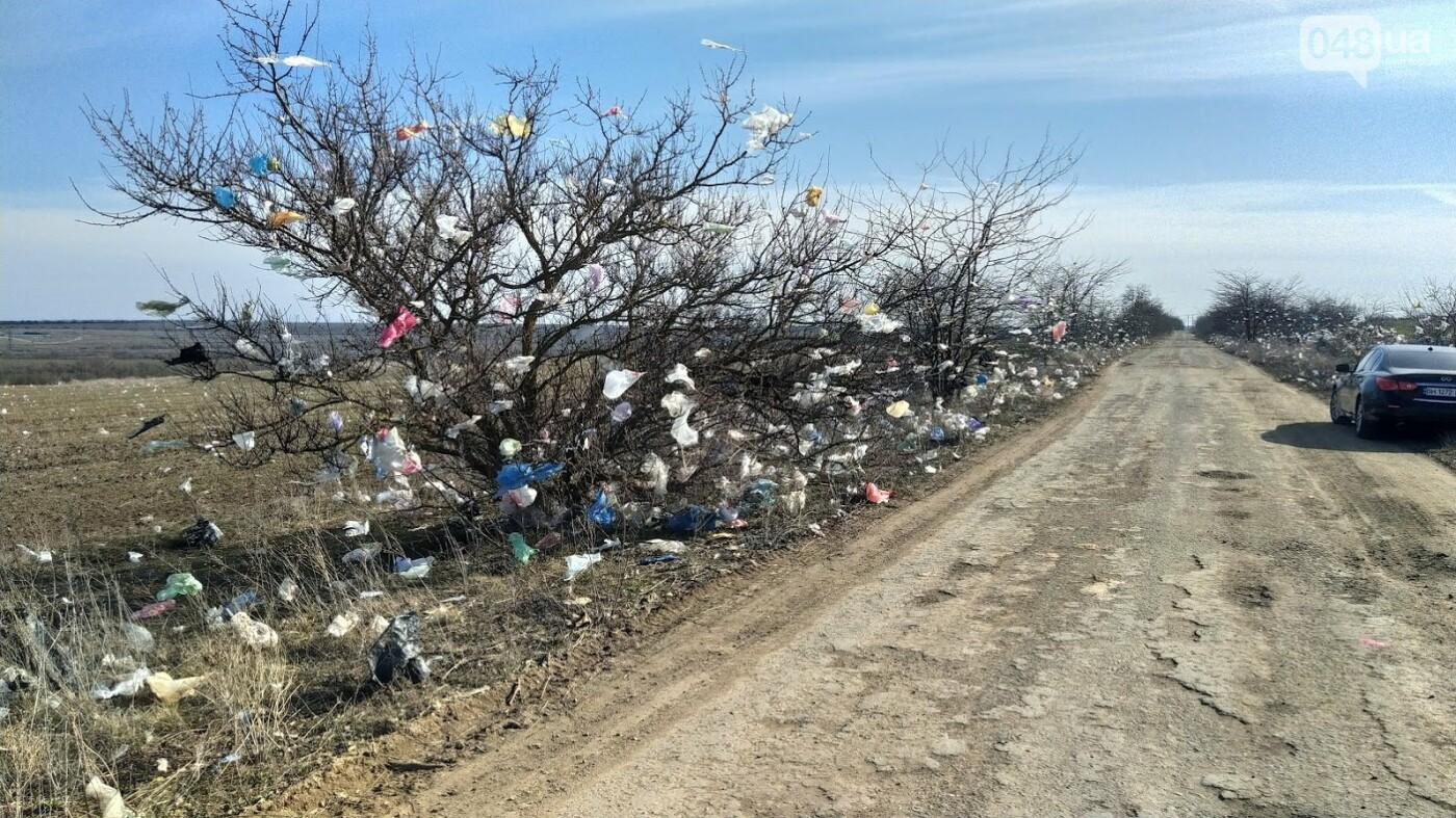 Дорога и поля после мусорной бури в селе Доброжаново, Одесская область.