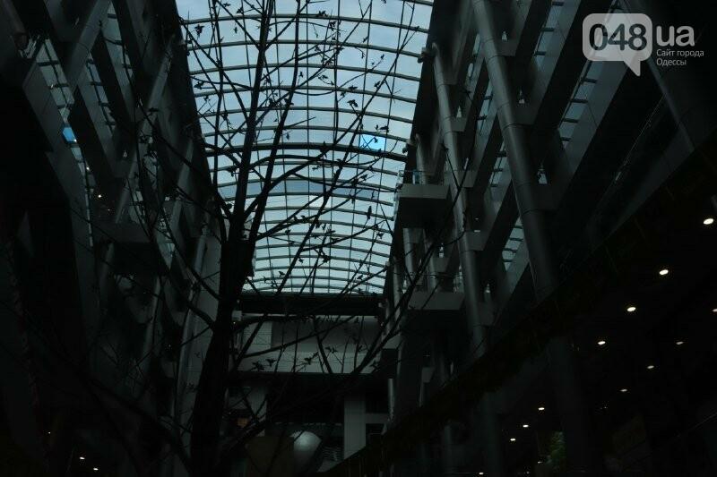 Карантин в Одессе: какие заведения решили не закрываться, - ФОТО, ВИДЕО, фото-6