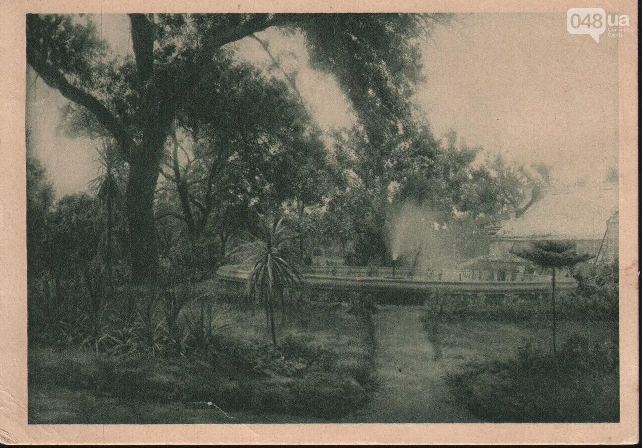 200 лет Одесскому ботаническому саду.  Масонский садовник Одессы, фото-1