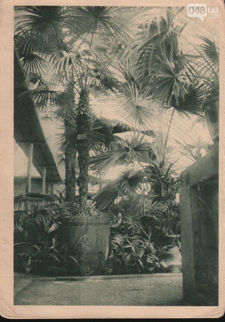 200 лет Одесскому ботаническому саду.  Масонский садовник Одессы, фото-2