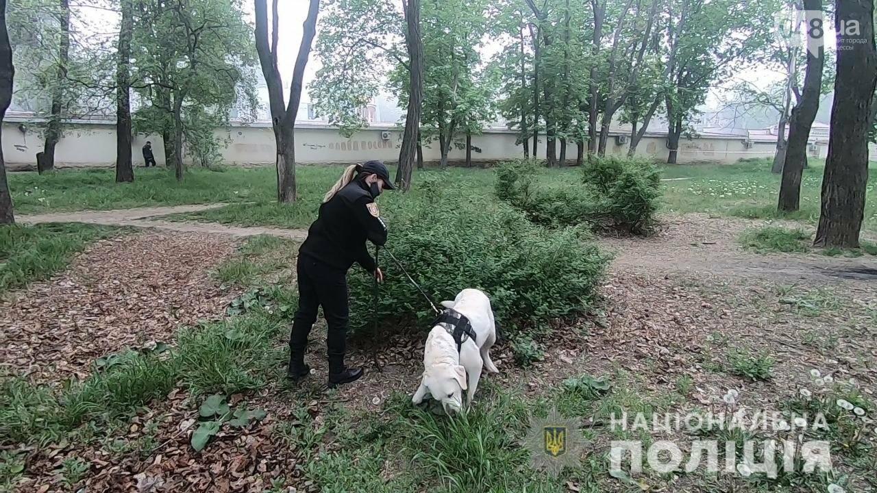 Годовщина событий 2 мая в Одессе: полиция следит за нарушителями карантина, - ФОТО, ВИДЕО, фото-3