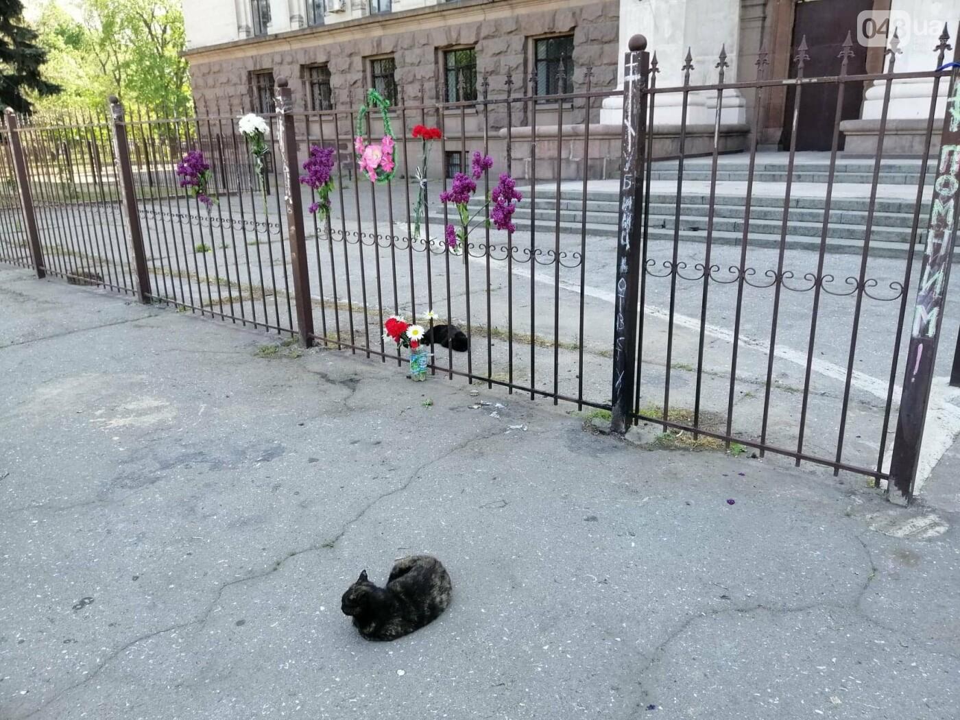 На Куликовом поле убрали цветы, которые одесситы принесли 2 мая,- ФОТО, фото-2