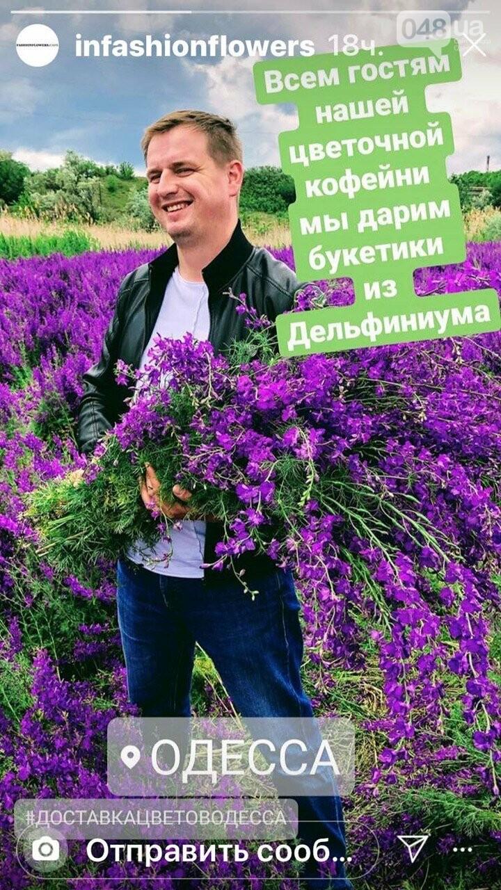 Фиолетовое поле под Одессой.