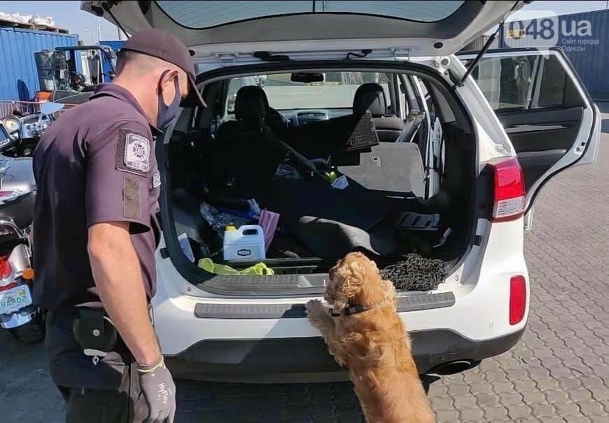 Одесские пограничники нашли патроны в авто из США, - ФОТО1